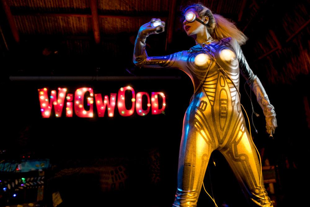 Wigwood-25.jpg