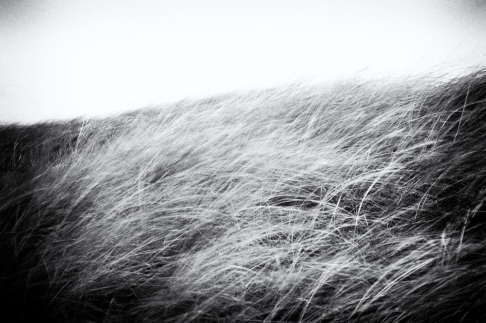 Landschaft03.jpg
