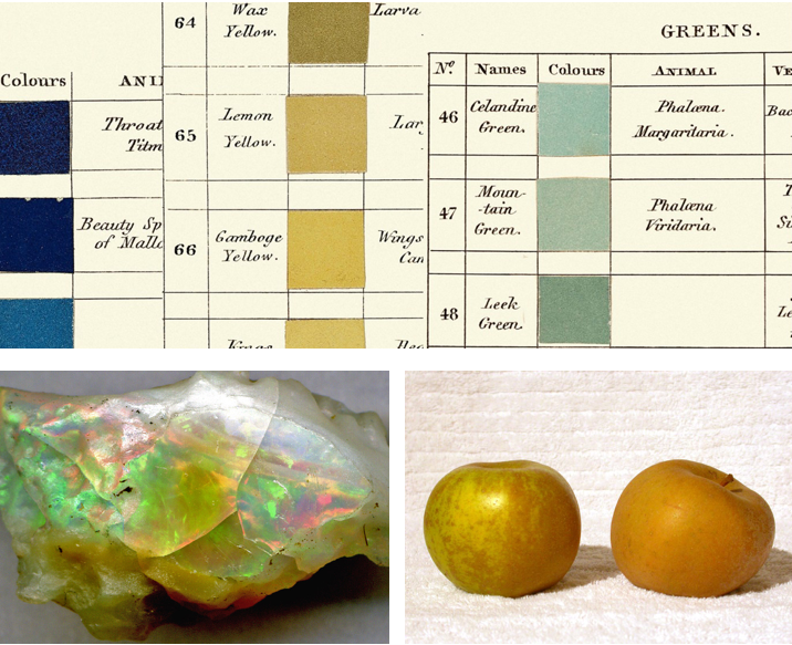 [ SOURCE:  Yellow ,  Opal ,  Apple  ]