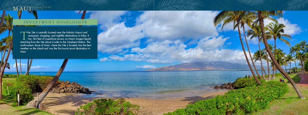 Maui Lu Offering Memorandum
