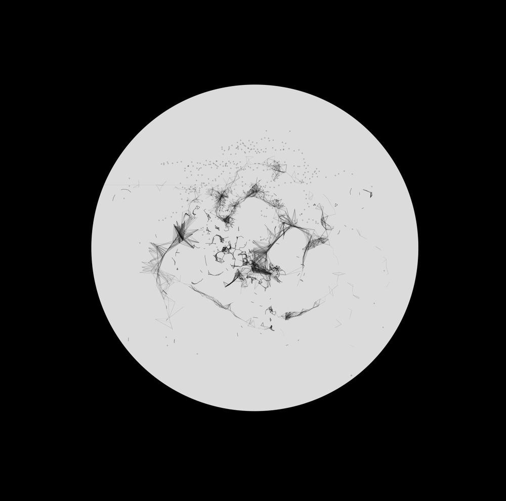 Petri Moon