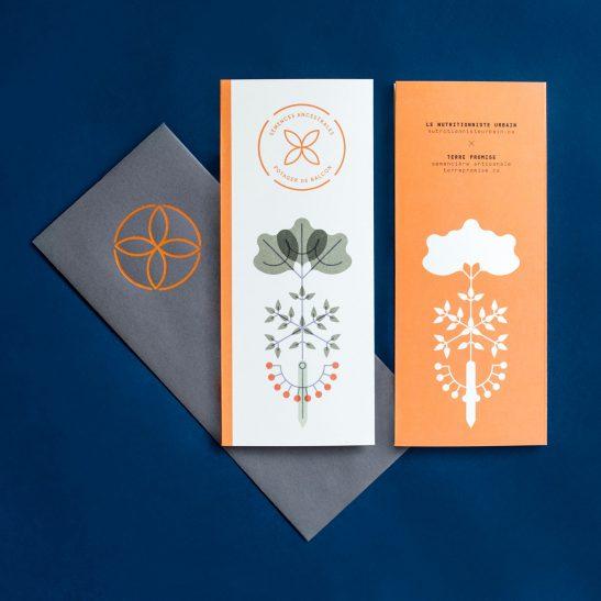 semences-ancestrales-nutritionniste-urbain-terre-promise-balcon-3-547x547.jpeg