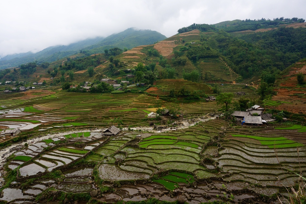 Vietnam-Sapa.JPG