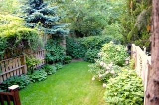 backyard 300 Withrow 2.jpg