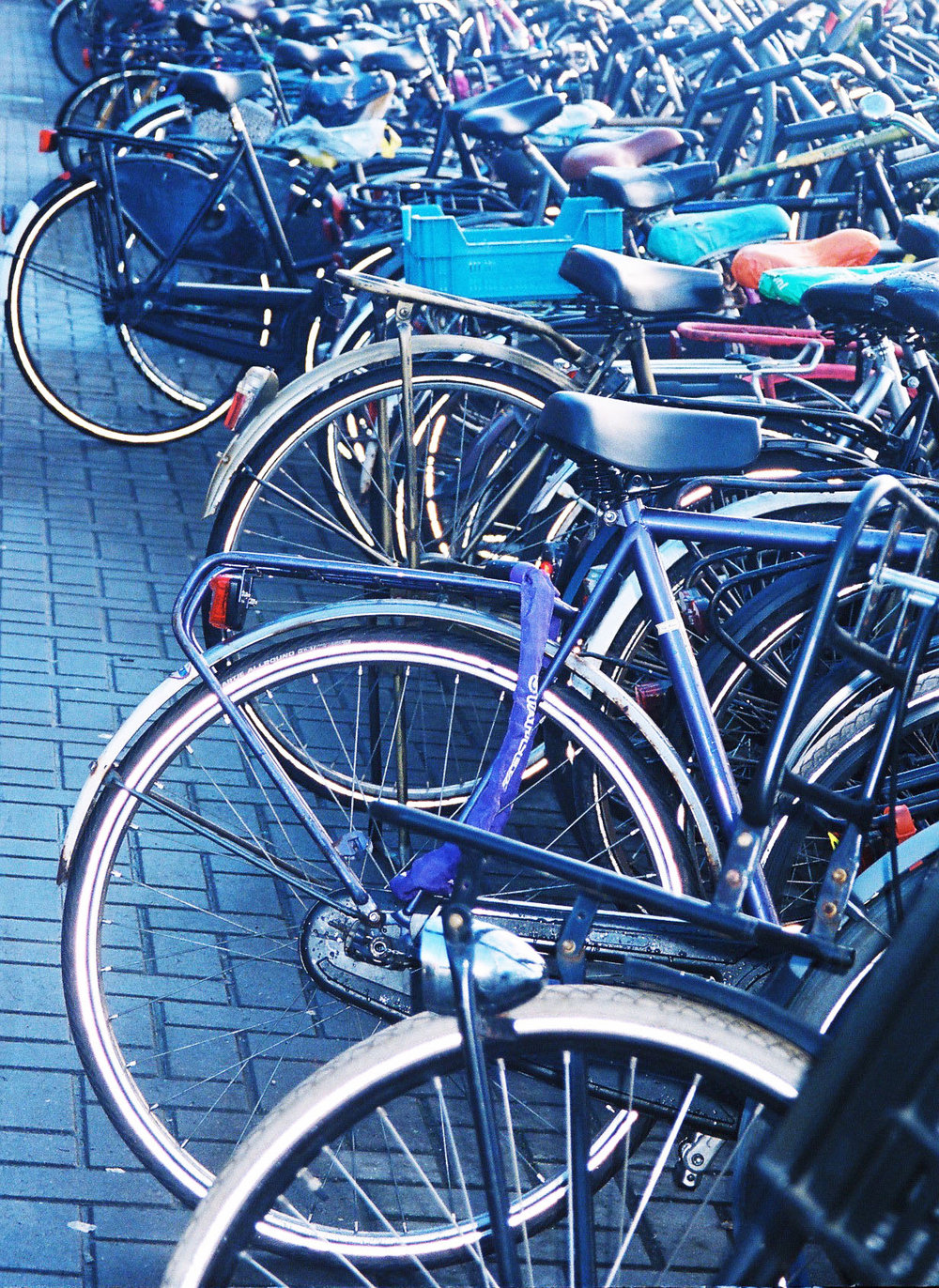 bicisamsterdam.jpg