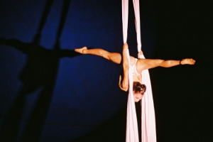 aerialist rainforest.JPG