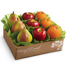 fruits basket season 2 essential oils for fruit flies