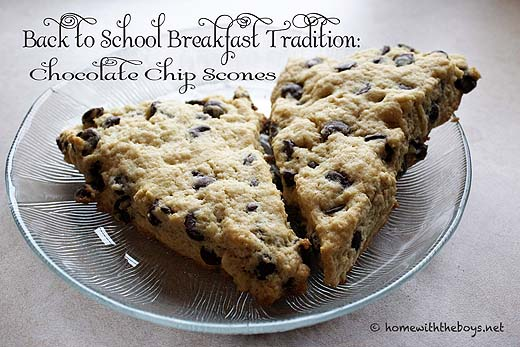 Chocolate-Chip-Scones1