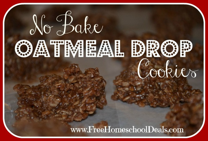 No Bake Oatmeal Drop Cookies