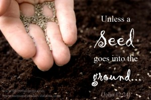 unless a seed