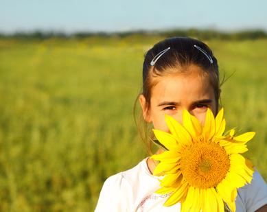 Portrait of a cute little girl hiding behind sunflower