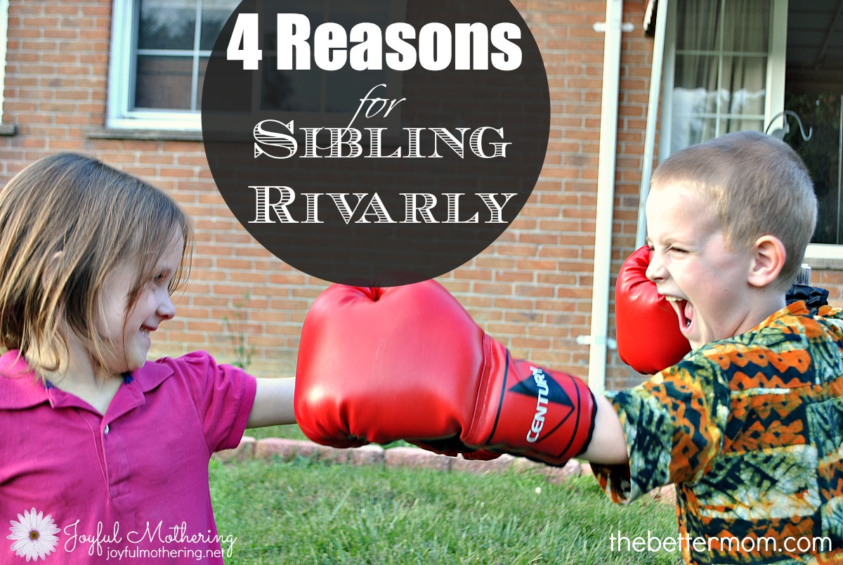 4 Reasons for Sibling Rivalry