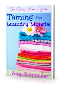 taming-the-laundry-monster-200x300