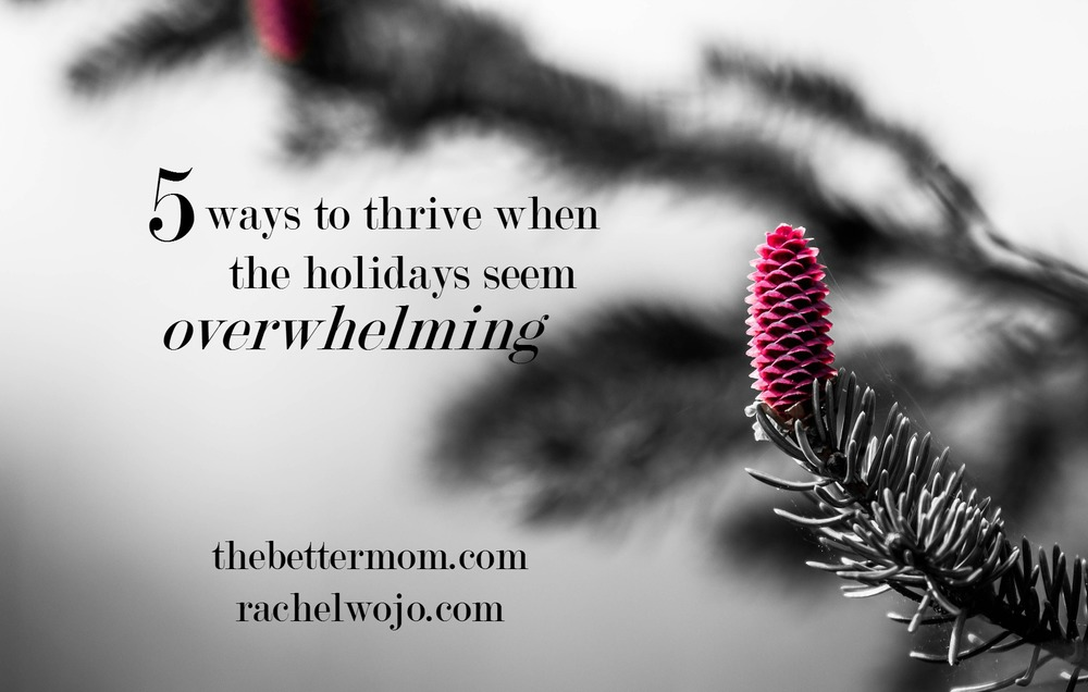 Don't let the holidays overwhelm you! These 5 steps will help you make peace on earth in the midst of the Christmas hum!