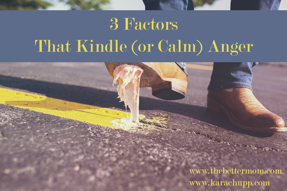 We all have them: little things that irk us and stir up anger and frustration. There are some key ingredients that can tip us over the edge though. Three things that can kindle anger or kindle calm. Ready to learn what they look like in your life?