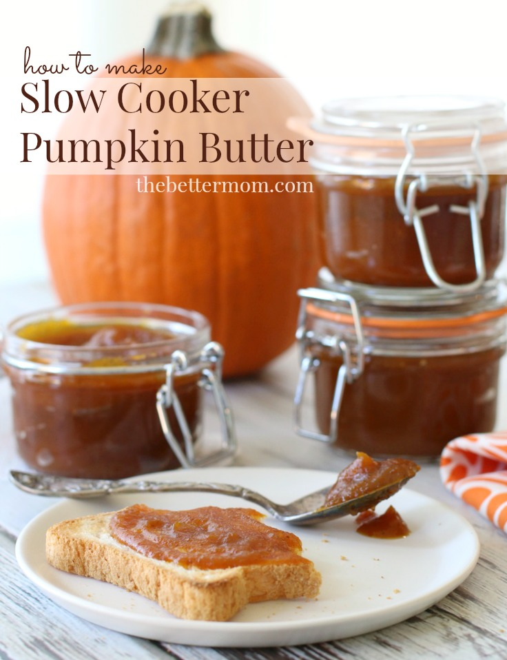 If you're a fan of pumpkin pie, you're certain to fall in love with this delightful pumpkin-spice spread that captures the delicious flavors of fall with every smooth and creamy bite!  Pumpkin butter is one of the easiest fruit butters to make!!