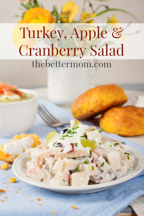 When it comes to Thanksgiving, leftover turkey is definitely a blessing! There are so many ways to transform leftover roasted turkey, or grilled turkey breast, into easy healthy meals like this simple and scrumptious turkey salad!  I love using homemade Greek yogurt combined with fresh apples, grapes and dried cranberries because it not only gives this turkey salad a creamy tang, but also a healthy dose of probiotics in every delicious bite!