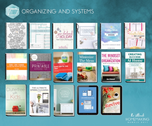 Organizing_and_Systems_updated_4-19.jpeg