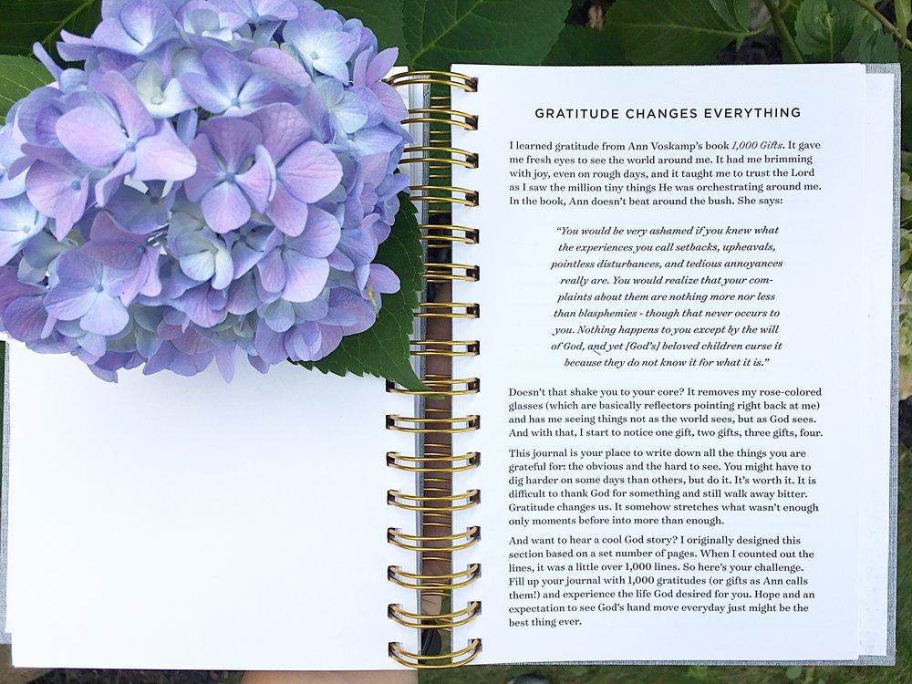 hydrangea prayer journal.jpg