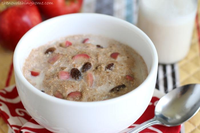 Cinnamon Apple Breakfast Porridge Close Up.jpg