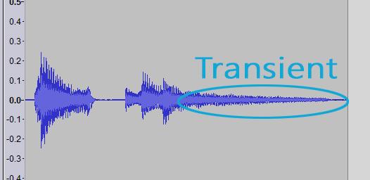 Z-transient.jpg