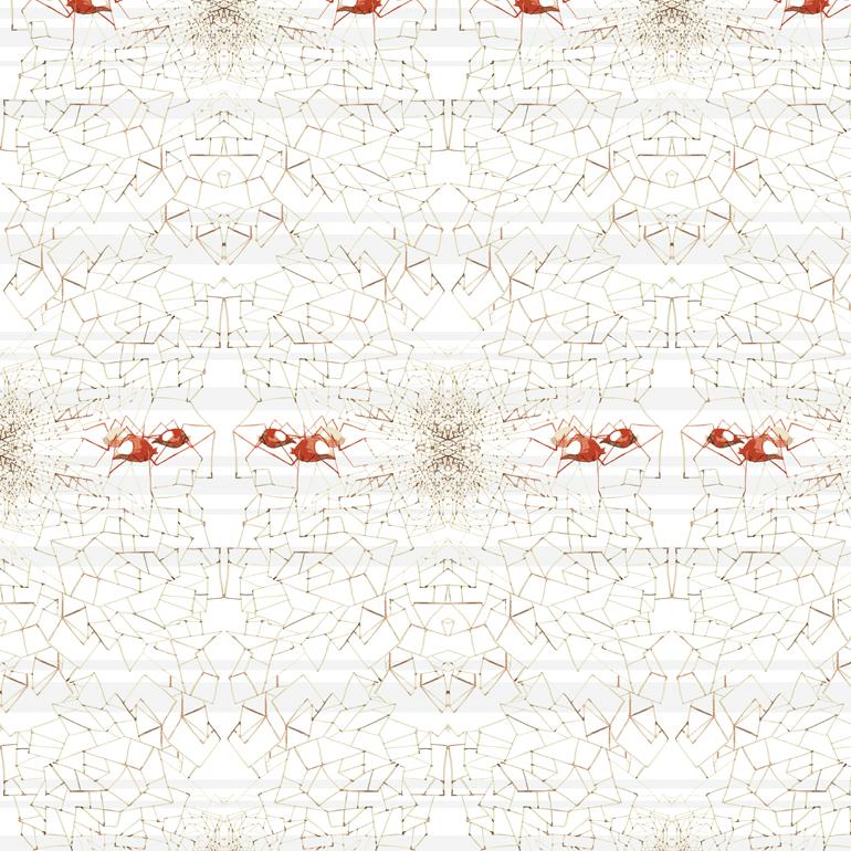 jlb_pp_bio_pattern_02.jpg