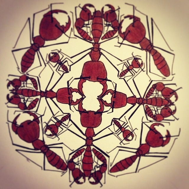 Army Ants (Driver Ants) mandala jamiebourgeois.tumblr.com