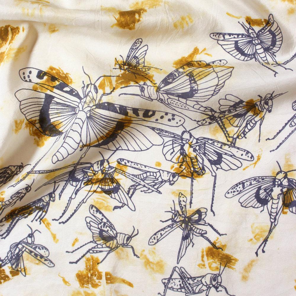 jlb_grasshopper_marigold_det crop.jpg