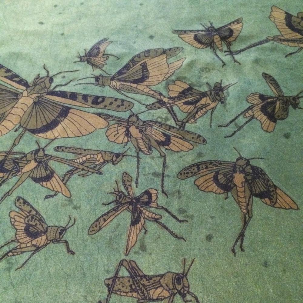 jbourgeois_grasshopper process08.jpg