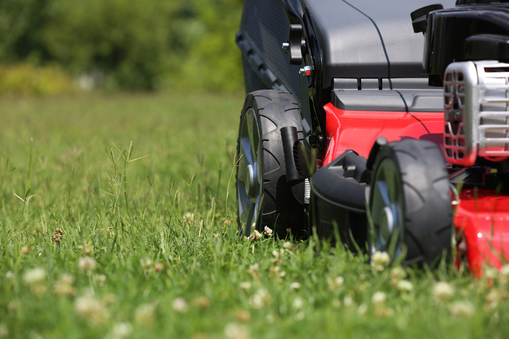 Andrews lawn care redding ca full service landscaping for Lawn treatment service