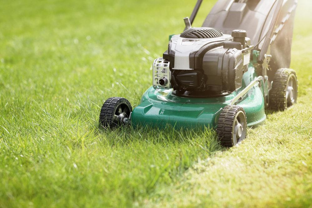 lawn mowing.jpeg