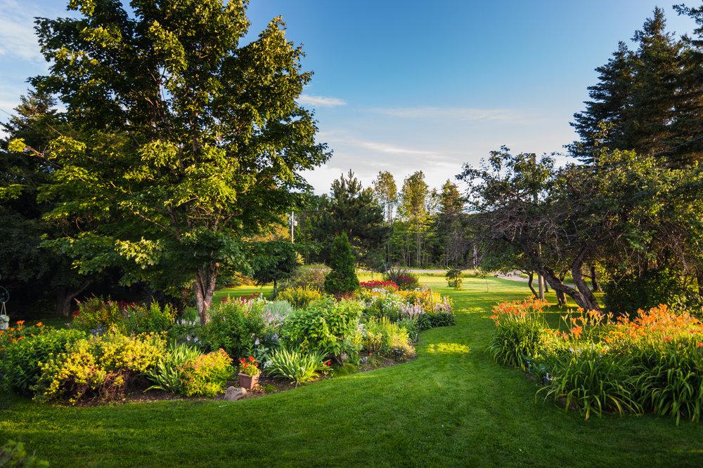 beautiful-front-yark-garden-PUMUTBJ (1).jpg