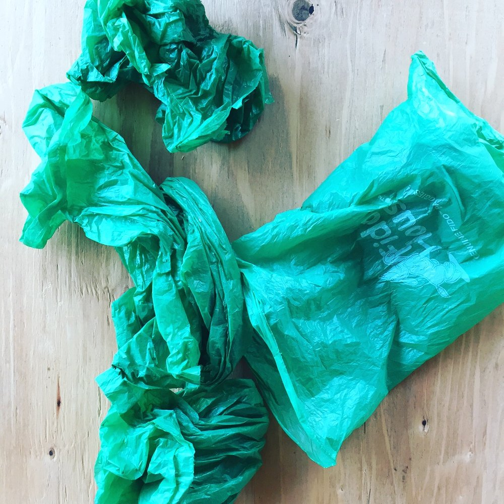 I had found one bag at a time for a while and kept forgetting to bring them. I was disgusted by the thought of putting trash in my pockets. Then one day right in the middle of the path was one green bag with about 30 more empty bags inside.  #nomoreexcuses