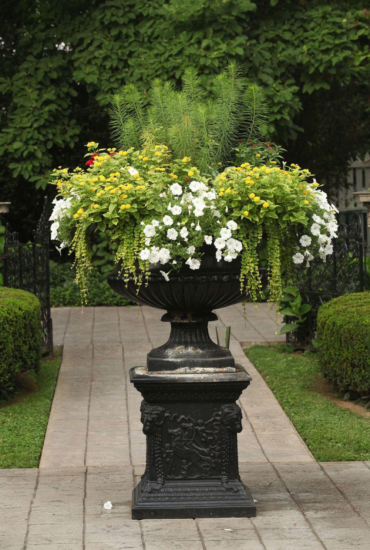 Urn In The Formal Garden, Whitehall, Louisville, KY