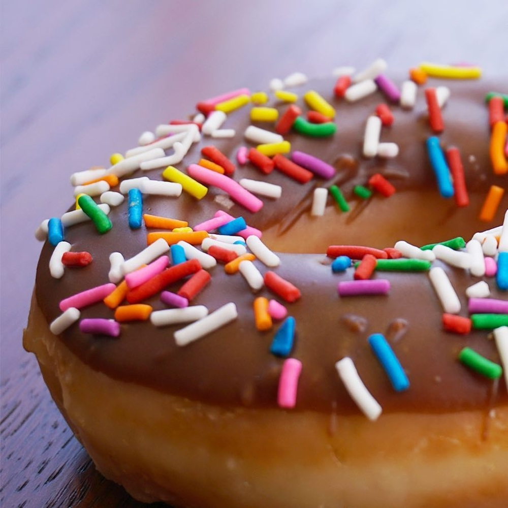 Chocolate Iced Glazed with Sprinkles Doughnut