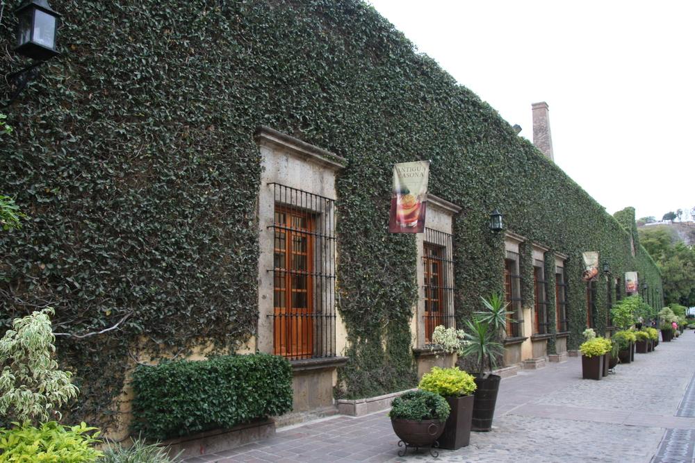 Tequila, Jalisco Pueblo magico