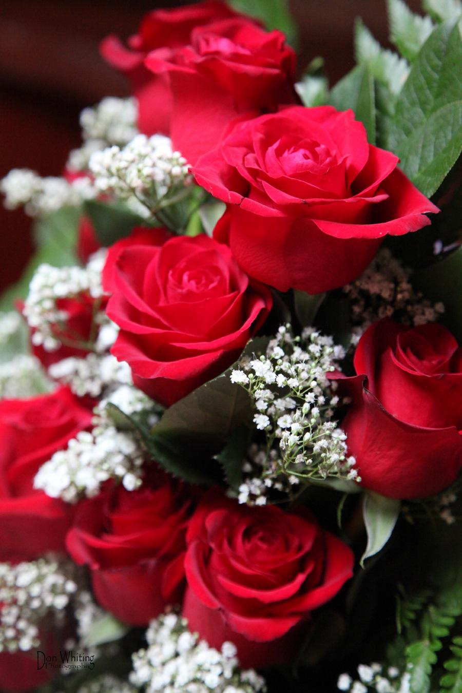 Flowers Scenic