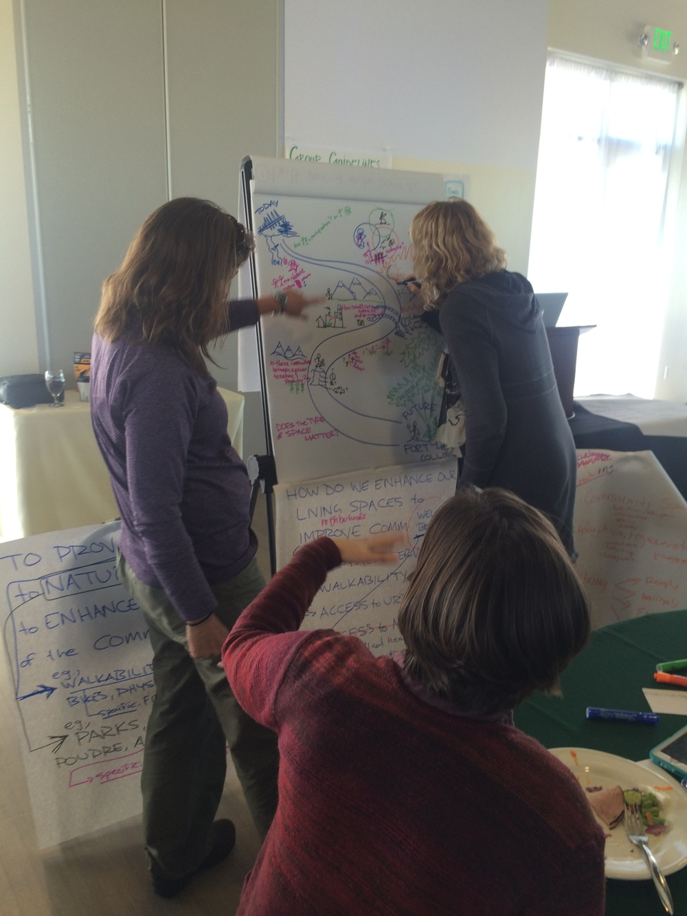 one-health-workshop-group-graphic-recording
