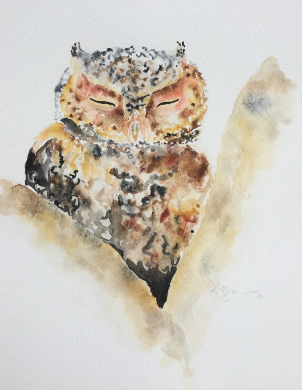 This month I've been working on my watercolor painting skills, leading to the creation of several Colorado wildlife paintings including this little flammulated owl.  If you'd like to see more paintings and work in progress shots, give me a follow on Instagram. If you like what you see and you're interested in purchasing fine art prints or greeting cards, let's chat!