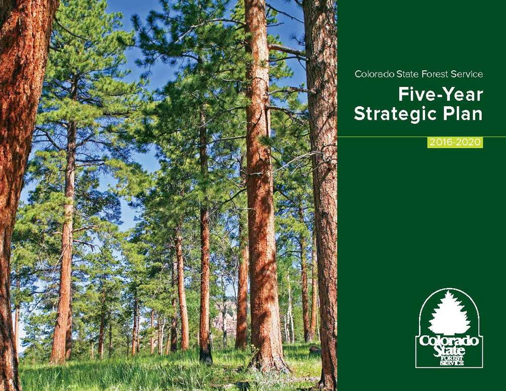 The Colorado State Forest Service hired ConverSketch to guide them through a strategic planning process in 2015. To see the full document, please click here.