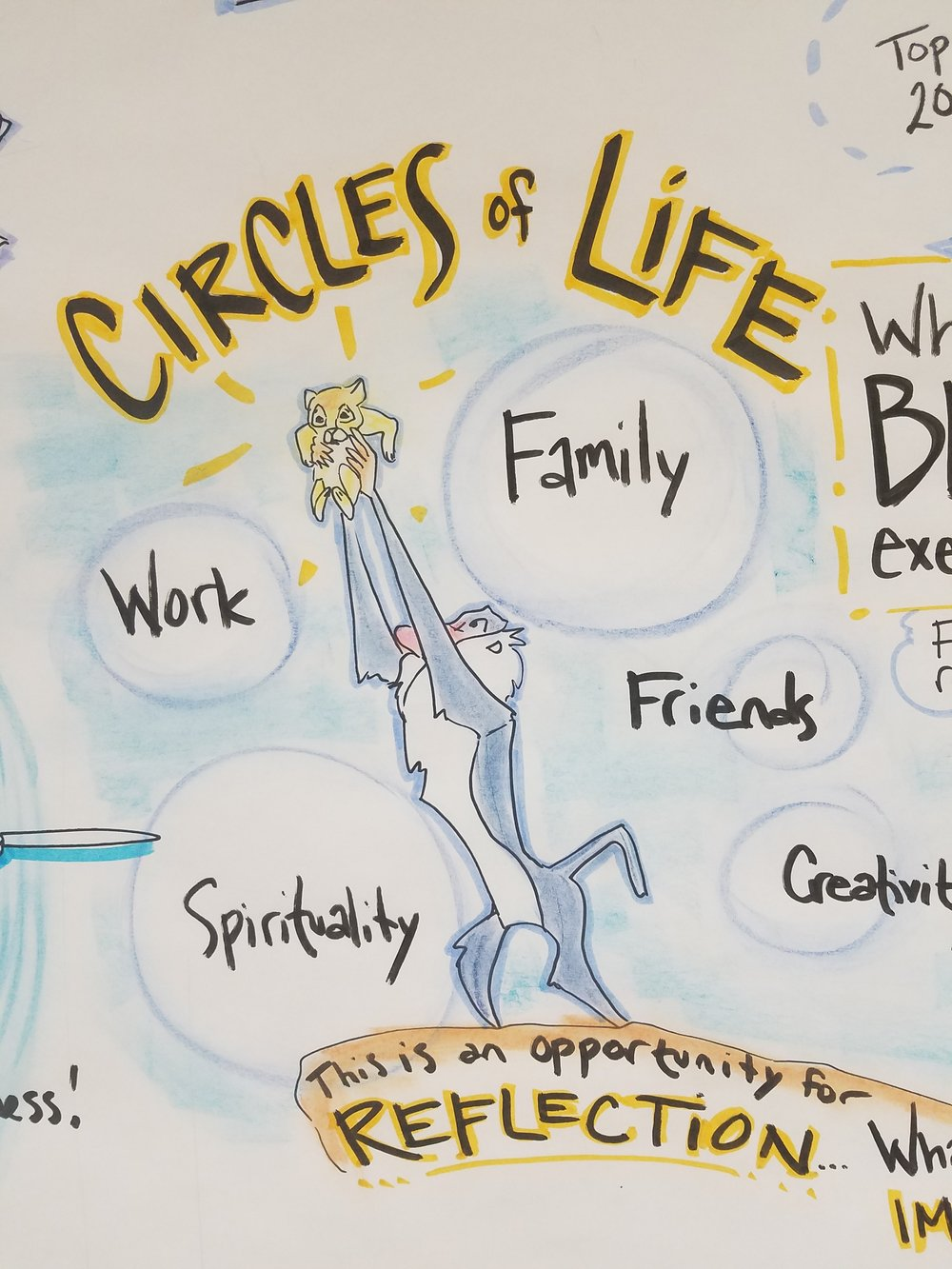 Circles of Life NSA Leadership Training Graphic Recording
