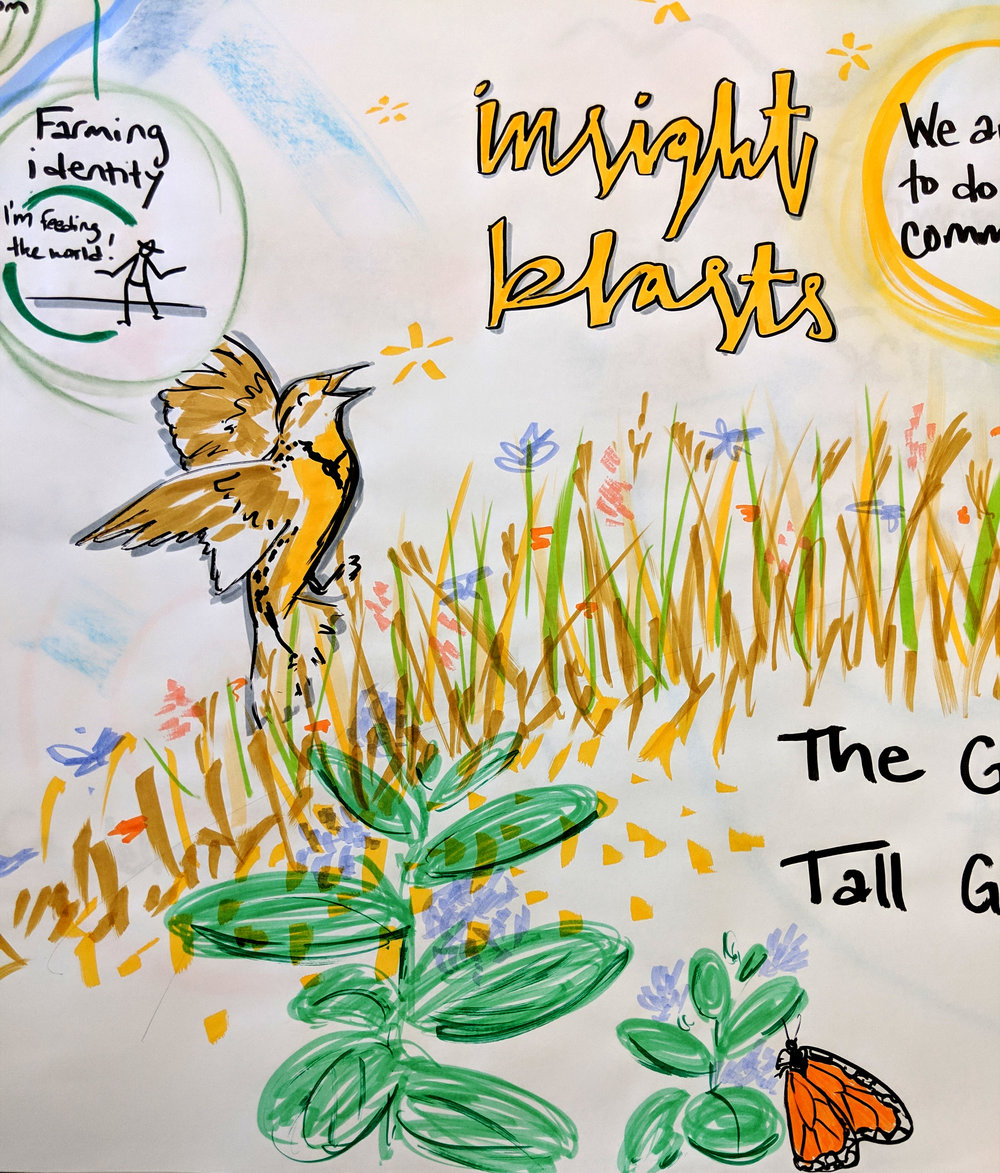 Washington, DC  with the Environmental Defense Fund. We are in the middle of a series of systems thinking workshops to help two teams re-frame how they're approaching their work around agriculture and pollinator habitat.