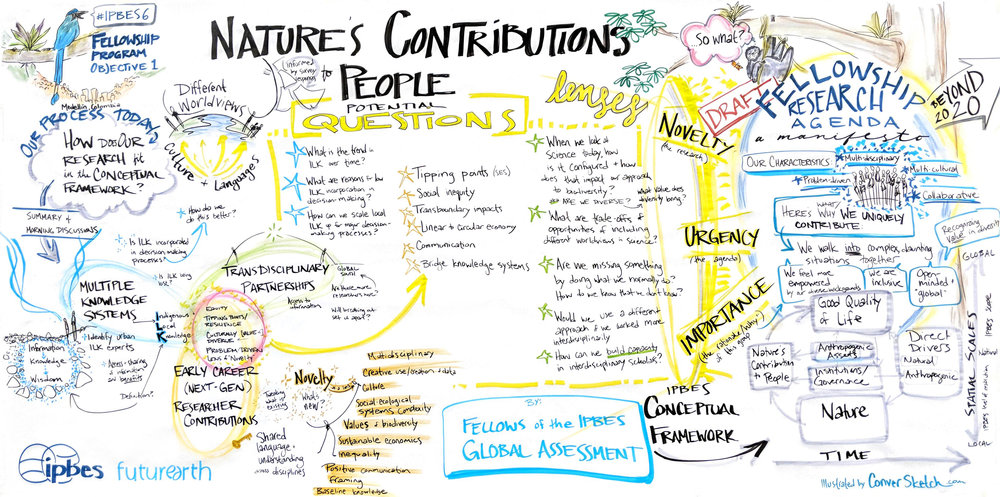 Graphic facilitation of research priorities on biodiversity and ecosystem services for a global team in Medellin, Colombia. | 2018