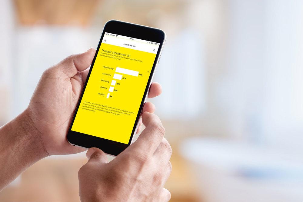 Enkel og nyttig info:  Appen gir også nyttige tips om hva strømmen normalt går til, strømsparetips og mye mer...