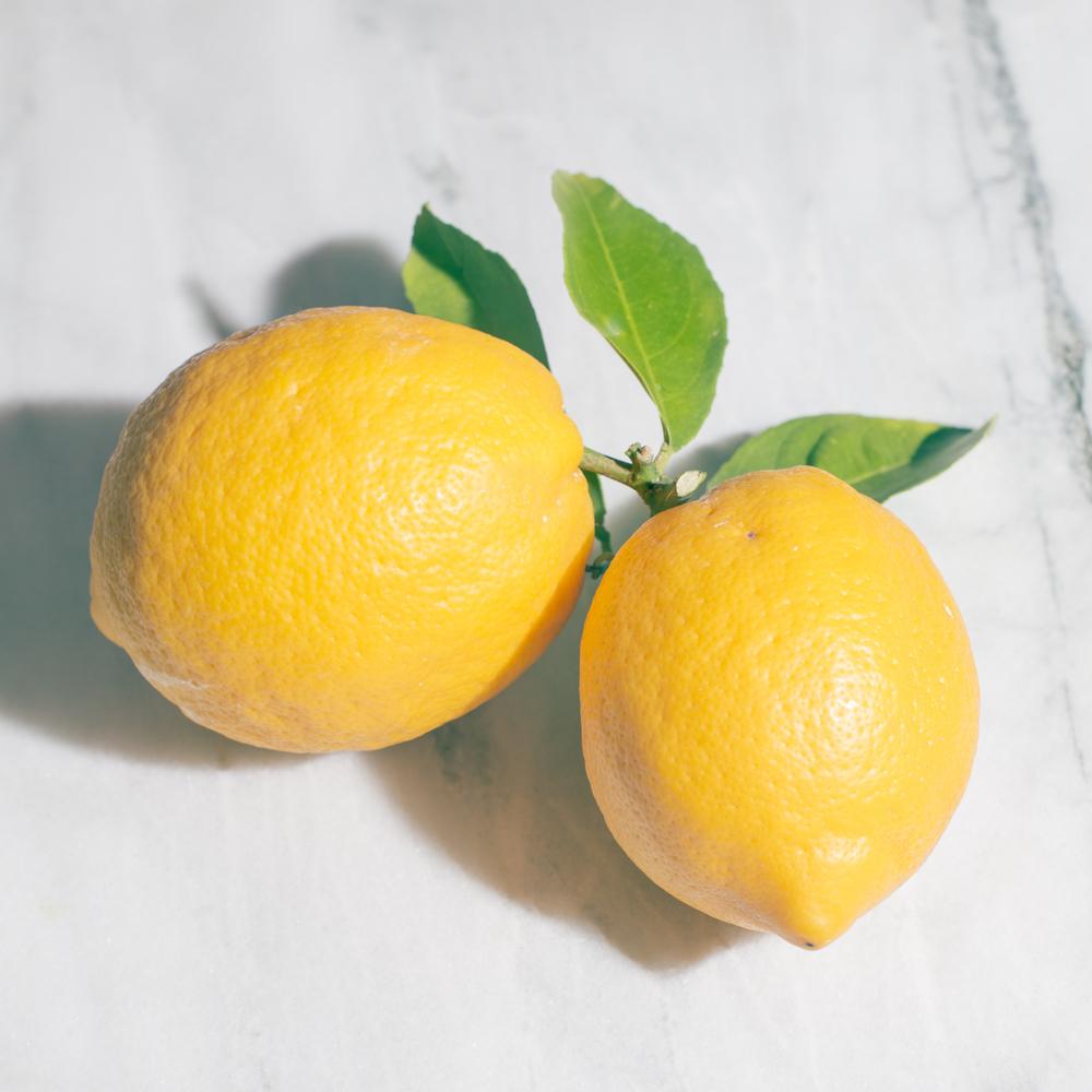 myer lemons