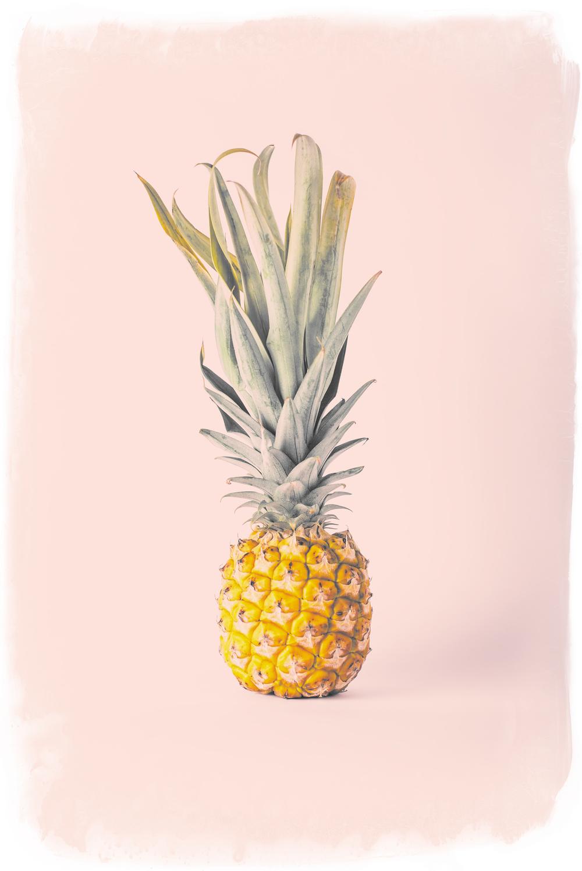 Pineapple-pink_01s.jpg