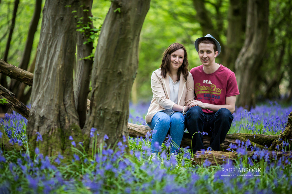 heartwood forest engagement shoot st albans hertfordshire-1006.jpg
