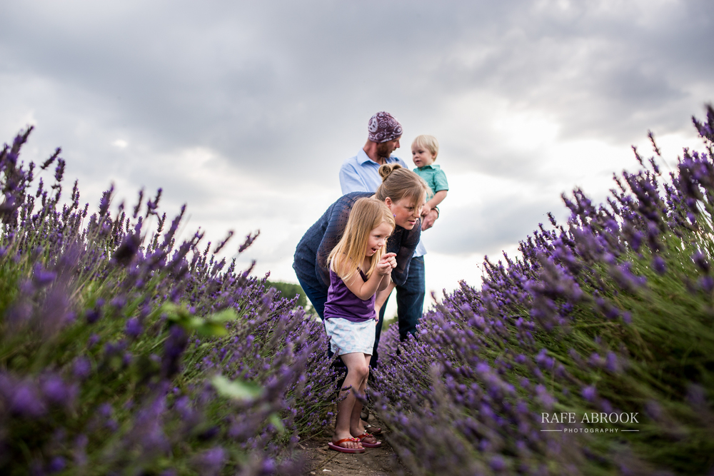 venn family shoot hitchin lavender farm hertfordshire-1014.jpg