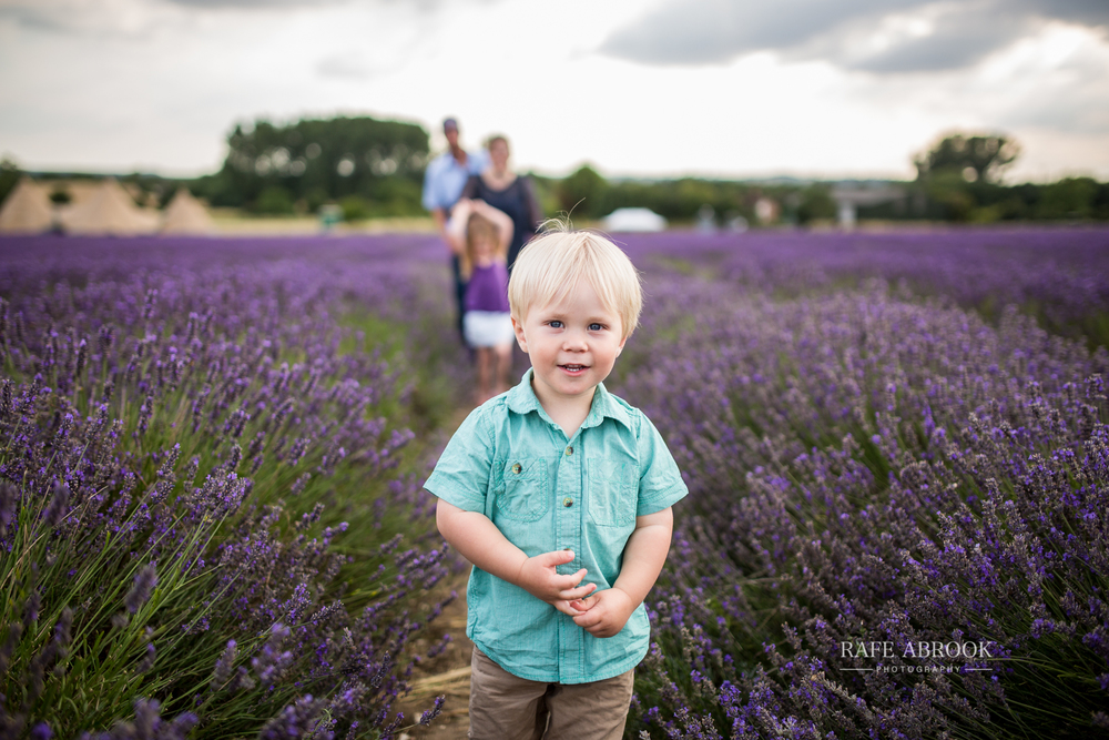 venn family shoot hitchin lavender farm hertfordshire-1018.jpg