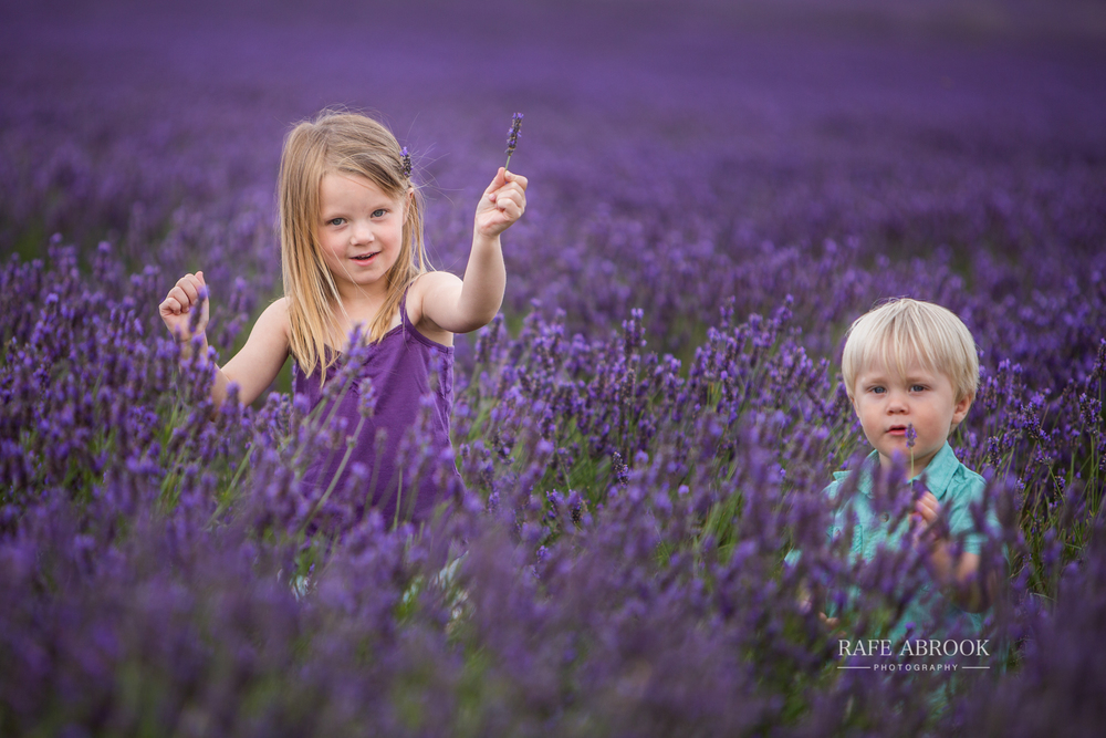 venn family shoot hitchin lavender farm hertfordshire-1044.jpg